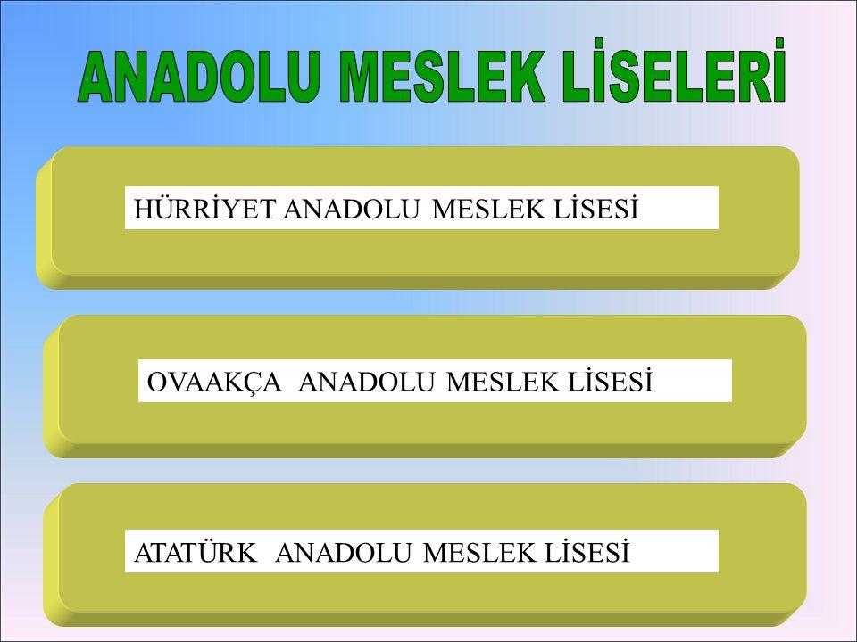 1.HÜRRİYET ANADOLU MESLEK L.
