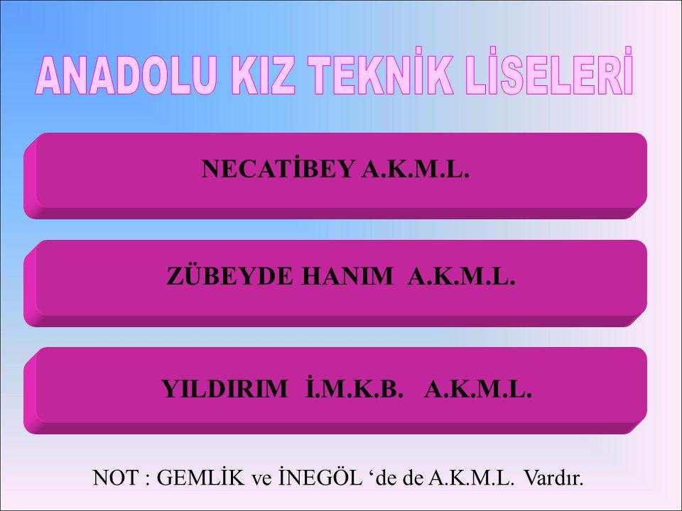 BÖLÜMÜ / ALANI ÖĞRT.