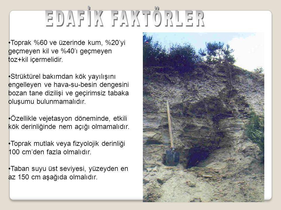 •Toprak %60 ve üzerinde kum, %20'yi geçmeyen kil ve %40'ı geçmeyen toz+kil içermelidir.