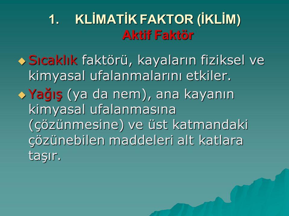 1.KLİMATİK FAKTOR (İKLİM) Aktif Faktör  Sıcaklık faktörü, kayaların fiziksel ve kimyasal ufalanmalarını etkiler.  Yağış (ya da nem), ana kayanın kim