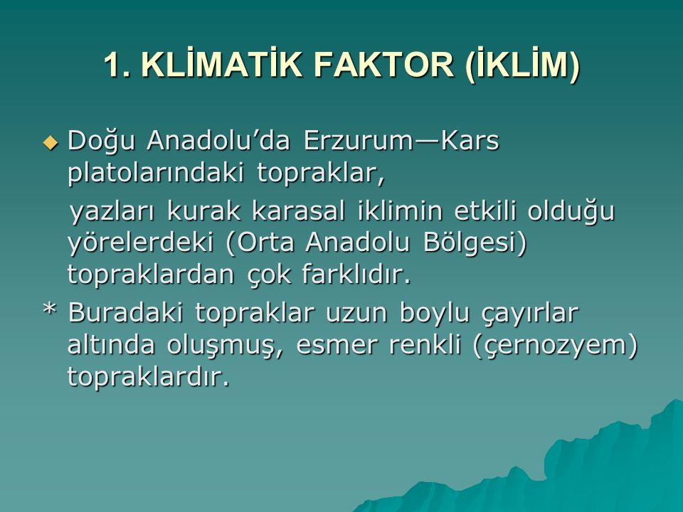 1. KLİMATİK FAKTOR (İKLİM)  Doğu Anadolu'da Erzurum—Kars platolarındaki topraklar, yazları kurak karasal iklimin etkili olduğu yörelerdeki (Orta Anad