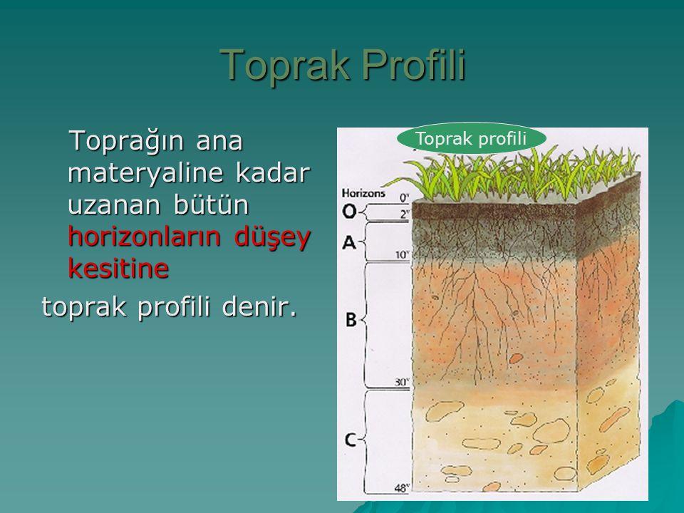 Toprak Profili Toprağın ana materyaline kadar uzanan bütün horizonların düşey kesitine Toprağın ana materyaline kadar uzanan bütün horizonların düşey