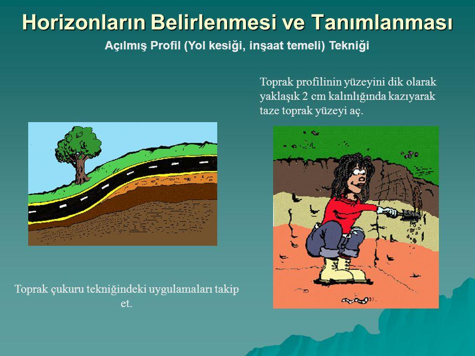 Açılmış Profil (Yol kesiği, inşaat temeli) Tekniği Toprak çukuru tekniğindeki uygulamaları takip et. Horizonların Belirlenmesi ve Tanımlanması Toprak