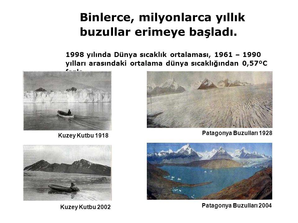 Patagonya Buzulları 1928 Patagonya Buzulları 2004 Kuzey Kutbu 2002 1998 yılında Dünya sıcaklık ortalaması, 1961 – 1990 yılları arasındaki ortalama dün