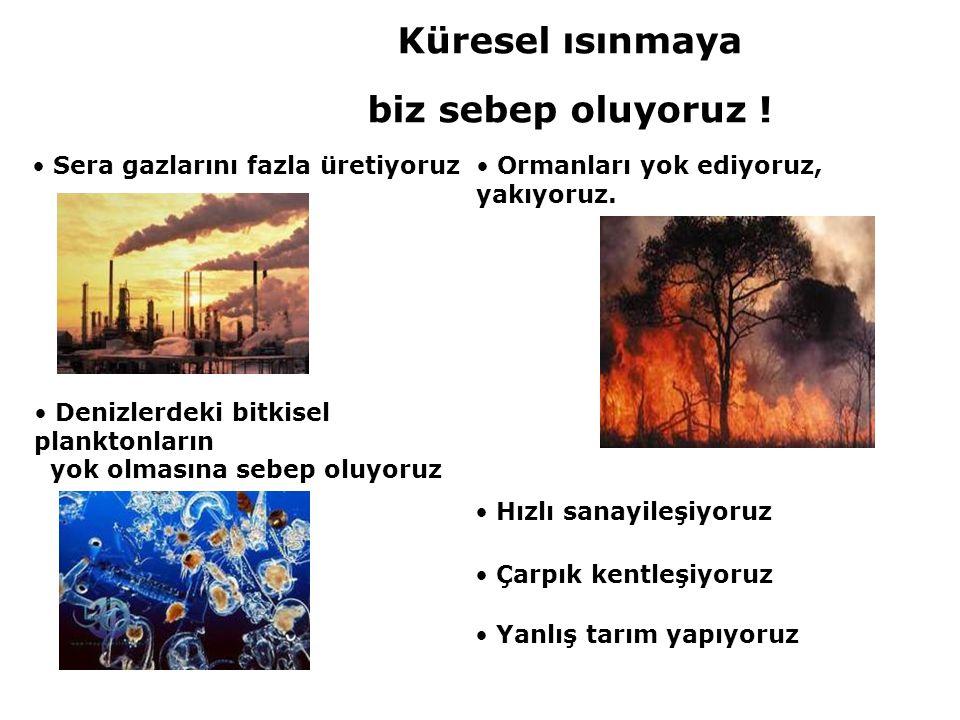 • Sera gazlarını fazla üretiyoruz• Ormanları yok ediyoruz, yakıyoruz. • Çarpık kentleşiyoruz • Hızlı sanayileşiyoruz • Denizlerdeki bitkisel planktonl