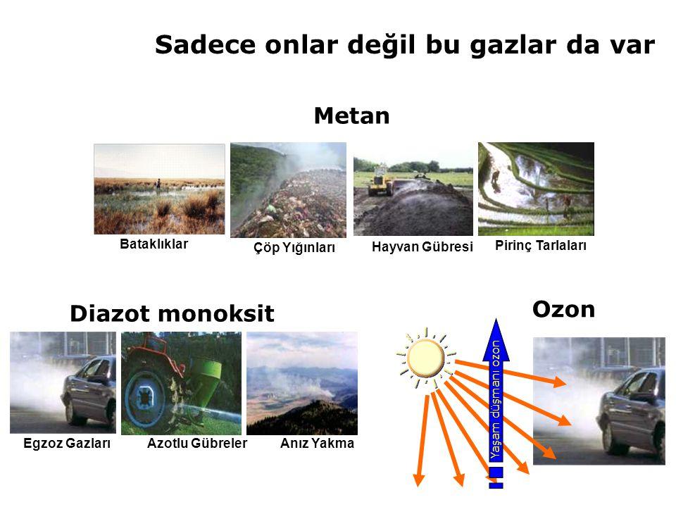 Karbondioksit % 50 Azot oksitler % 5 Ozon % 7 Metan % 13 Halokarbonlar (CFC,HCFC,HFC) % 17 Peki, suçlu gazların payları ne kadar?