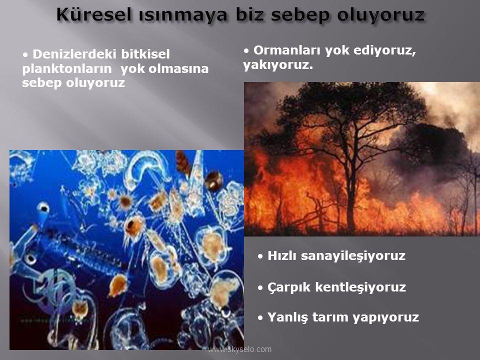 • Denizlerdeki bitkisel planktonların yok olmasına sebep oluyoruz • Ormanları yok ediyoruz, yakıyoruz. • Hızlı sanayileşiyoruz • Çarpık kentleşiyoruz