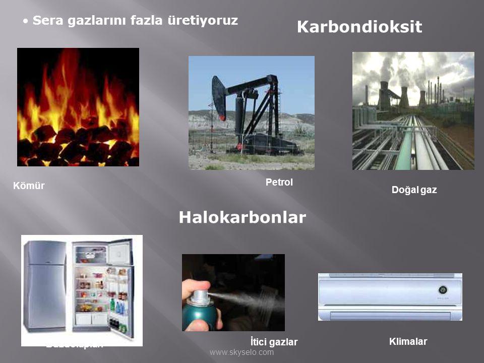 • Sera gazlarını fazla üretiyoruz Karbondioksit Halokarbonlar Buzdolapları İtici gazlar Klimalar Kömür Petrol Doğal gaz www.skyselo.com