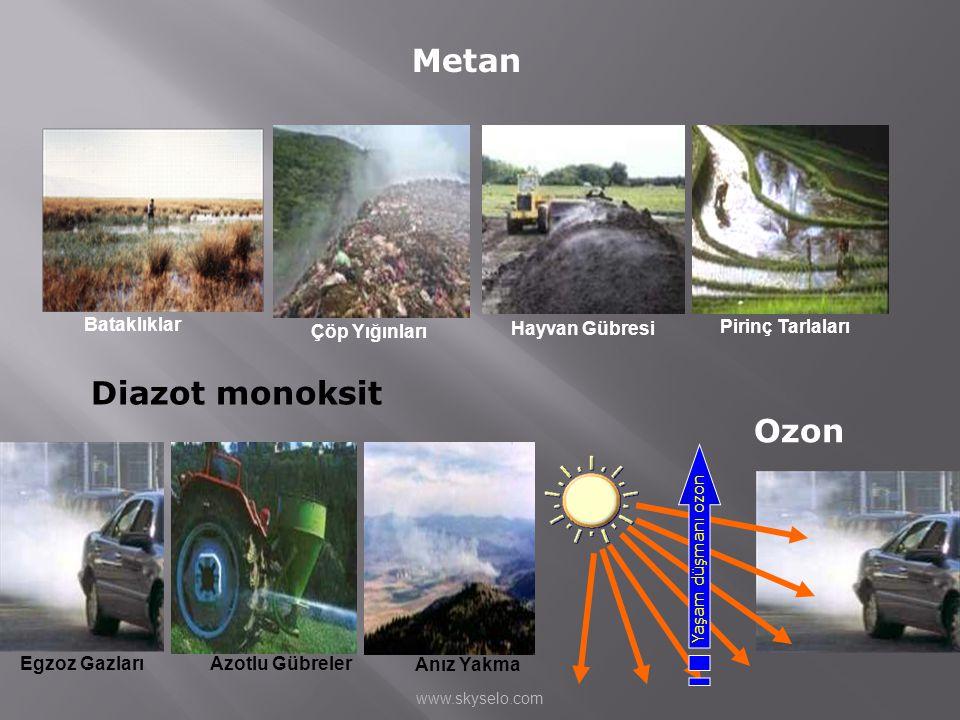 Metan Çöp Yığınları Hayvan Gübresi Pirinç Tarlaları Bataklıklar Diazot monoksit Egzoz Gazları Azotlu Gübreler Anız Yakma Yaşam düşmanı ozon Ozon www.s