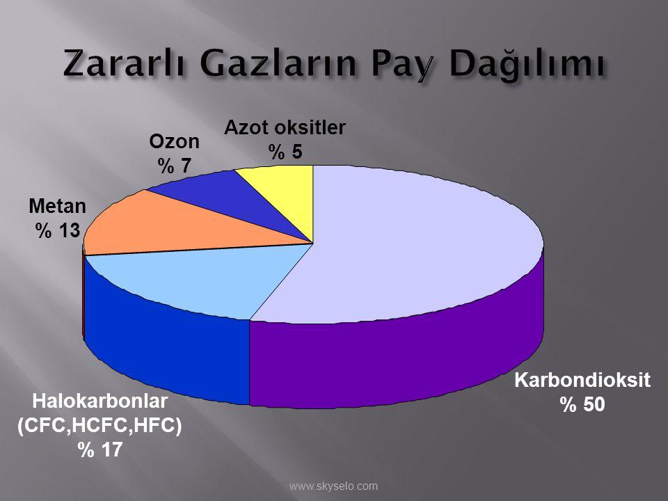 Karbondioksit % 50 Azot oksitler % 5 Ozon % 7 Metan % 13 Halokarbonlar (CFC,HCFC,HFC) % 17 www.skyselo.com