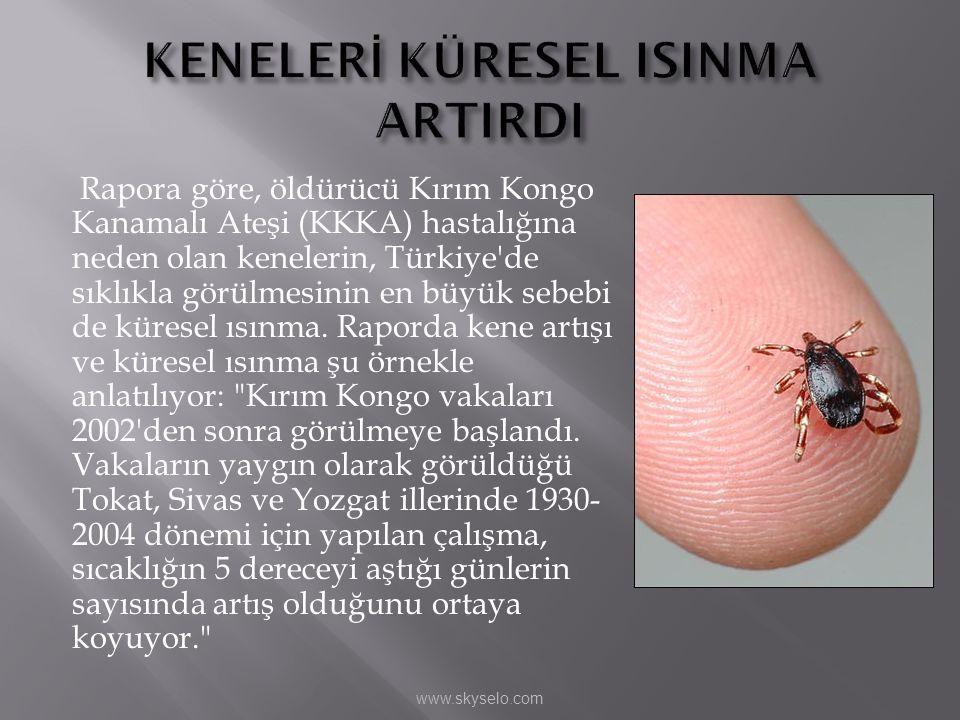 Rapora göre, öldürücü Kırım Kongo Kanamalı Ateşi (KKKA) hastalığına neden olan kenelerin, Türkiye'de sıklıkla görülmesinin en büyük sebebi de küresel