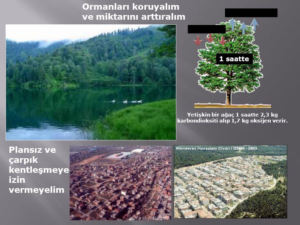 Ormanları koruyalım ve miktarını arttıralım 1,7 kg Oksijen 2,3 kg CO 2 1 saatte Plansız ve çarpık kentleşmeye izin vermeyelim Yetişkin bir ağaç 1 saat