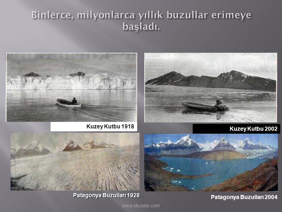 Kuzey Kutbu 1918 Patagonya Buzulları 1928 Kuzey Kutbu 2002 Patagonya Buzulları 2004 www.skyselo.com