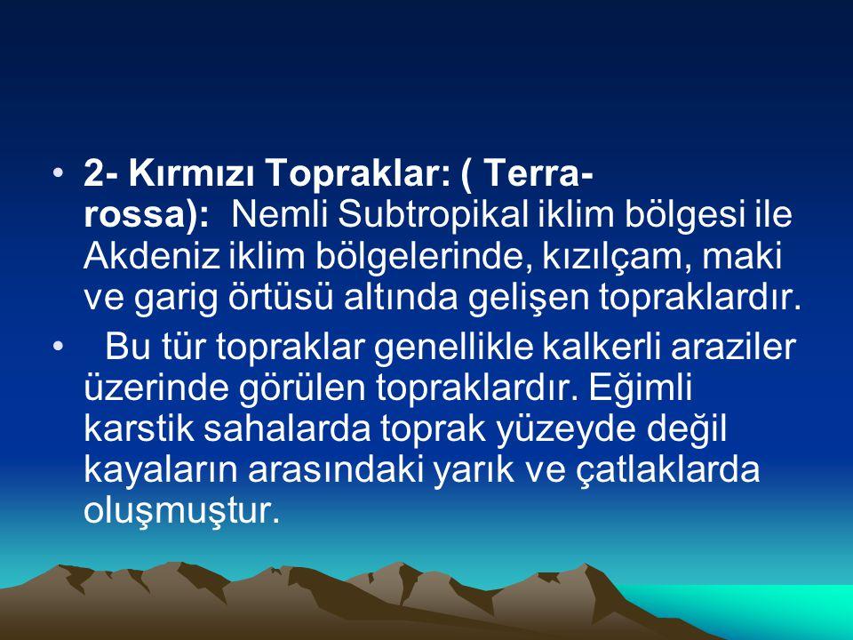 •2- Kırmızı Topraklar: ( Terra- rossa): Nemli Subtropikal iklim bölgesi ile Akdeniz iklim bölgelerinde, kızılçam, maki ve garig örtüsü altında gelişen