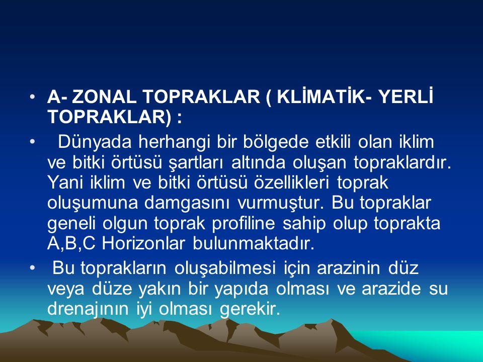 •A- ZONAL TOPRAKLAR ( KLİMATİK- YERLİ TOPRAKLAR) : • Dünyada herhangi bir bölgede etkili olan iklim ve bitki örtüsü şartları altında oluşan topraklard