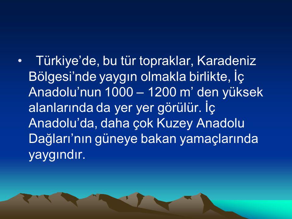 • Türkiye'de, bu tür topraklar, Karadeniz Bölgesi'nde yaygın olmakla birlikte, İç Anadolu'nun 1000 – 1200 m' den yüksek alanlarında da yer yer görülür