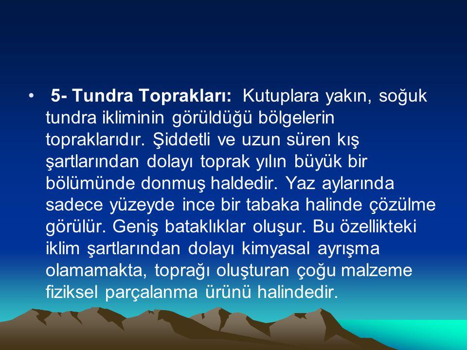 • 5- Tundra Toprakları: Kutuplara yakın, soğuk tundra ikliminin görüldüğü bölgelerin topraklarıdır. Şiddetli ve uzun süren kış şartlarından dolayı top