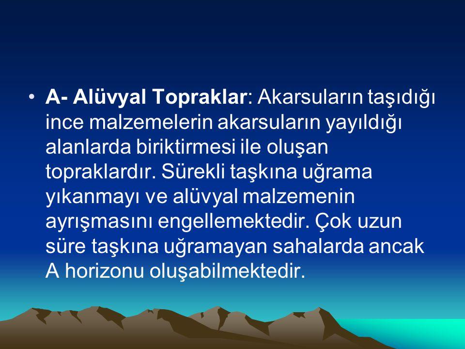 •A- Alüvyal Topraklar: Akarsuların taşıdığı ince malzemelerin akarsuların yayıldığı alanlarda biriktirmesi ile oluşan topraklardır. Sürekli taşkına uğ