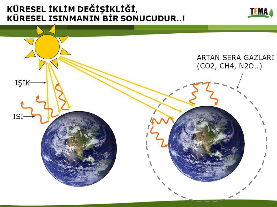 KÜRESEL ISINMANIN BAŞLICA NEDENİ OLAN SERA GAZLARI VE KAYNAKLARI -1 Kömür PetrolDoğal gaz Karbondioksit (CO 2 ) Metan (CH 4 ) Çöpler Hayvan Gübresi Bataklıklar