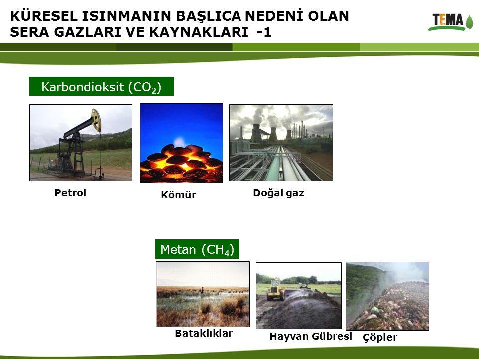 KÜRESEL ISINMANIN BAŞLICA NEDENİ OLAN SERA GAZLARI VE KAYNAKLARI -1 Kömür PetrolDoğal gaz Karbondioksit (CO 2 ) Metan (CH 4 ) Çöpler Hayvan Gübresi Ba