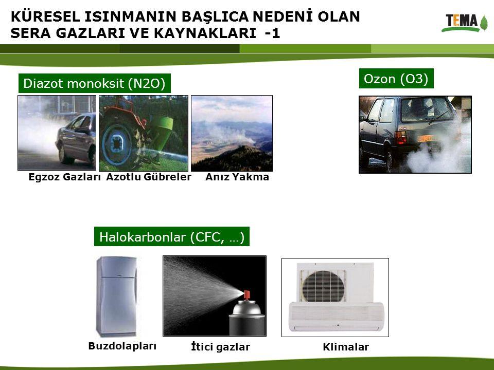 Halokarbonlar (CFC, …) Buzdolapları İtici gazlar Klimalar Diazot monoksit (N2O) Egzoz Gazları Azotlu Gübreler Anız Yakma Ozon (O3) KÜRESEL ISINMANIN B