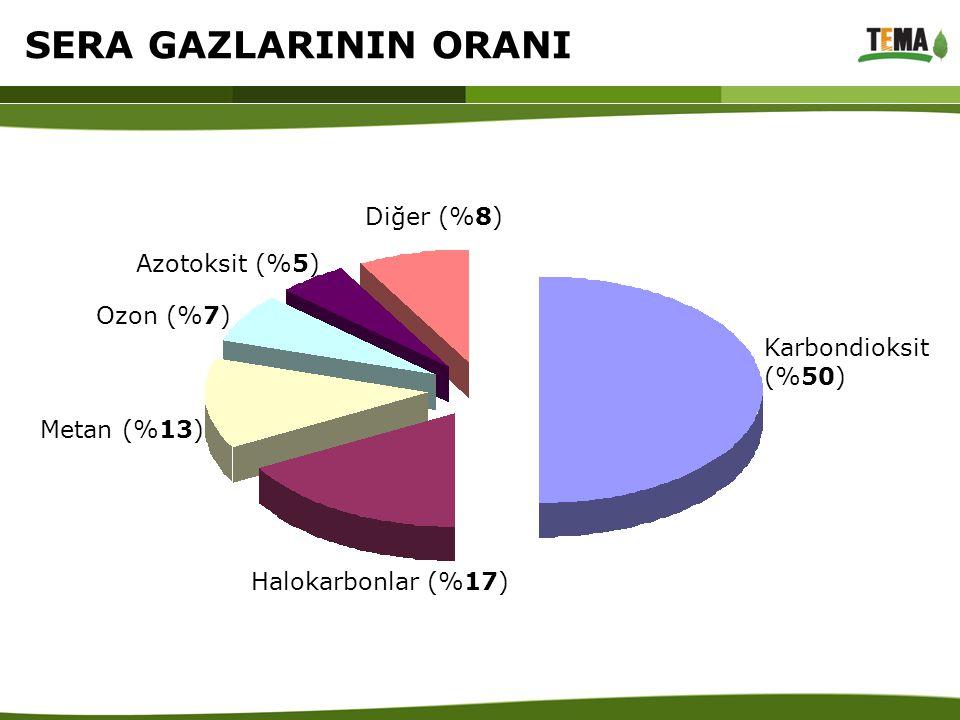 Karbondioksit (%50) Halokarbonlar (%17) Metan (%13) Ozon (%7) Azotoksit (%5) Diğer (%8) SERA GAZLARININ ORANI