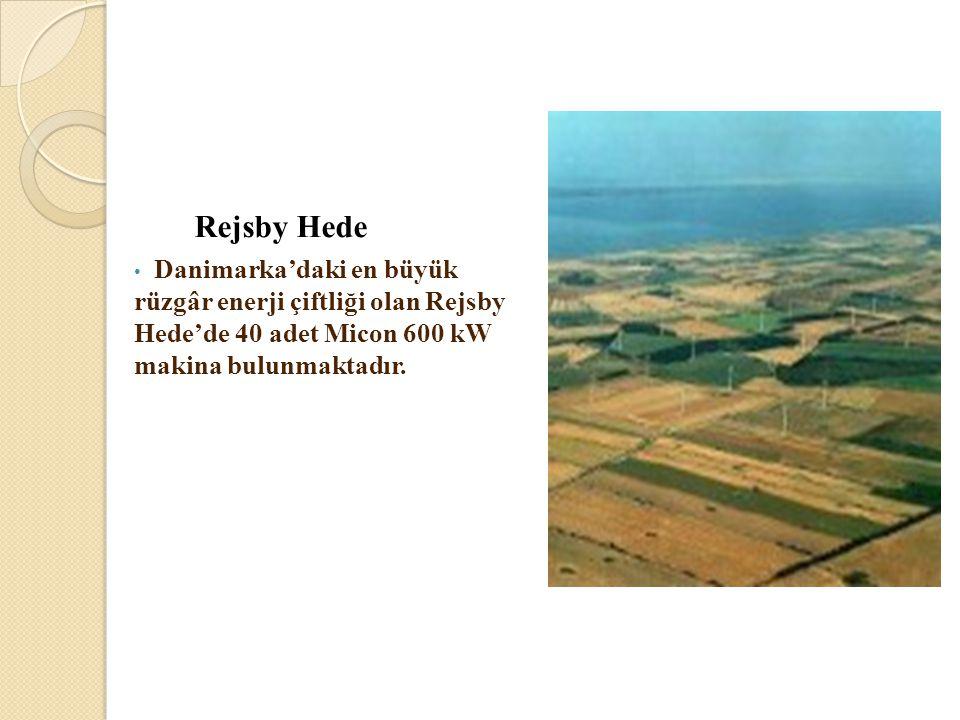 Rejsby Hede • Danimarka'daki en büyük rüzgâr enerji çiftliği olan Rejsby Hede'de 40 adet Micon 600 kW makina bulunmaktadır.
