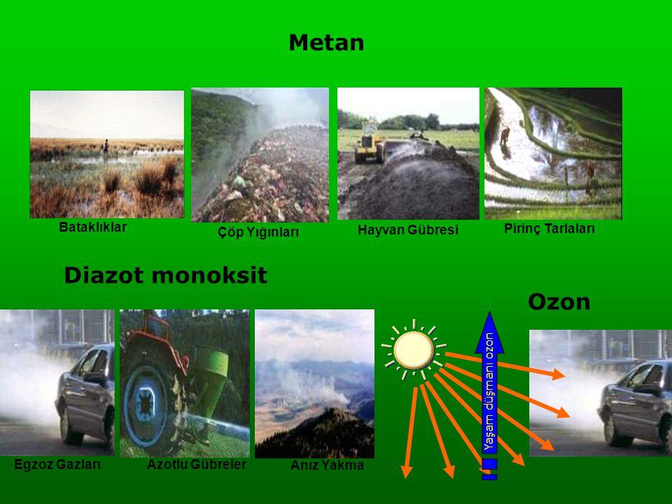 Metan Çöp Yığınları Hayvan Gübresi Pirinç Tarlaları Bataklıklar Diazot monoksit Egzoz Gazları Azotlu Gübreler Anız Yakma Yaşam düşmanı ozon Ozon