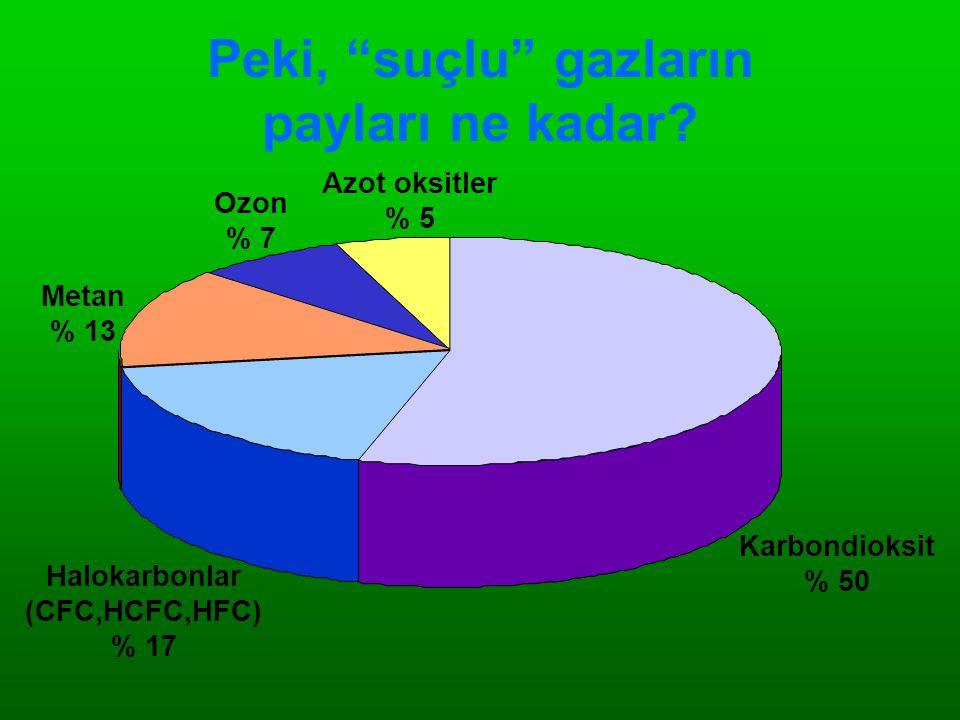 """Peki, """"suçlu"""" gazların payları ne kadar? Karbondioksit % 50 Azot oksitler % 5 Ozon % 7 Metan % 13 Halokarbonlar (CFC,HCFC,HFC) % 17"""