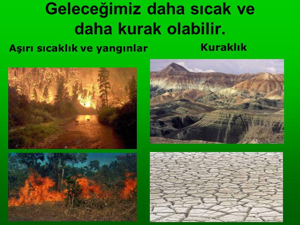 Geleceğimiz daha sıcak ve daha kurak olabilir. Aşırı sıcaklık ve yangınlar Kuraklık