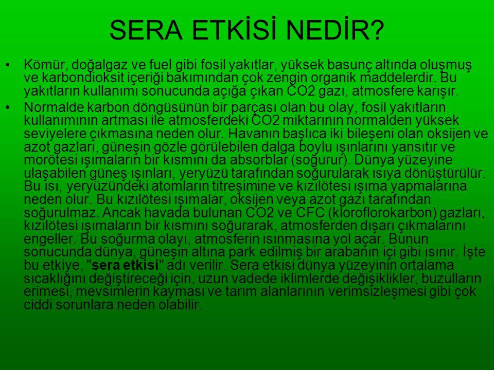 Devlet Olarak küresel ısınmaya karşı yapılabilecekler : •* Öncelikle Türkiye nin gerçekçi bir sera gazı değerlerini belirlemek • * Hidrolik enerjiden en fazla yararlanmak.