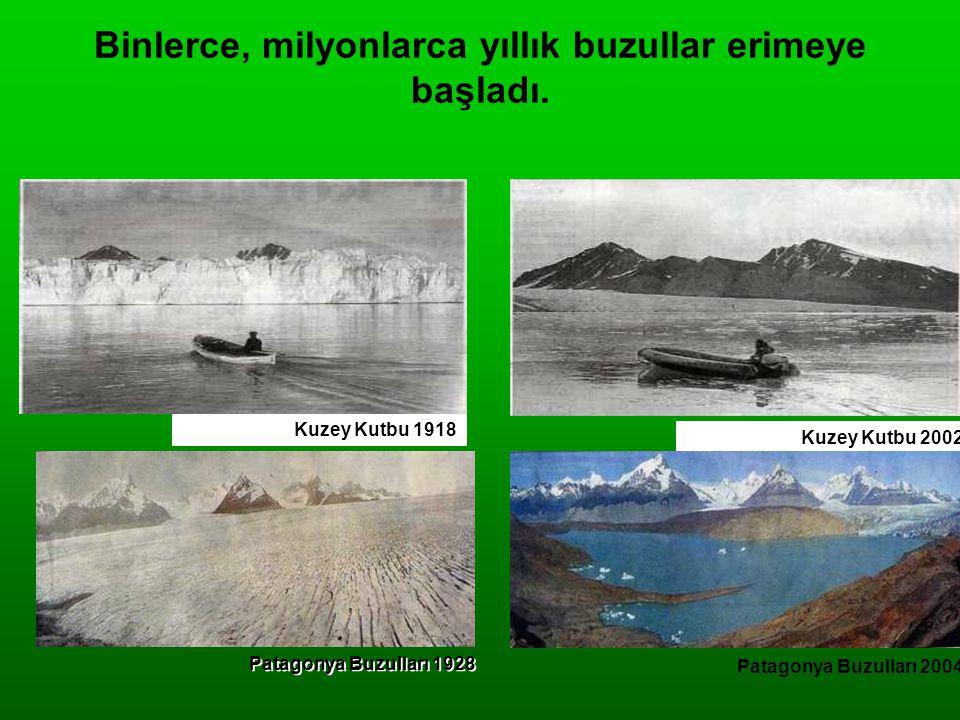 Binlerce, milyonlarca yıllık buzullar erimeye başladı. Kuzey Kutbu 1918 Patagonya Buzulları 1928 Kuzey Kutbu 2002 Patagonya Buzulları 2004