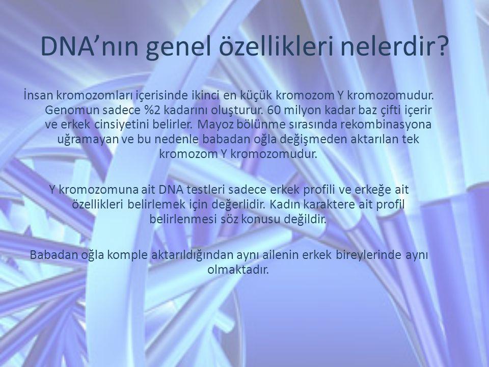 DNA'nın genel özellikleri nelerdir? İnsan kromozomları içerisinde ikinci en küçük kromozom Y kromozomudur. Genomun sadece %2 kadarını oluşturur. 60 mi