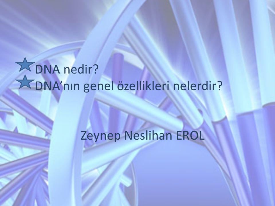 DNA nedir? DNA'nın genel özellikleri nelerdir? Zeynep Neslihan EROL