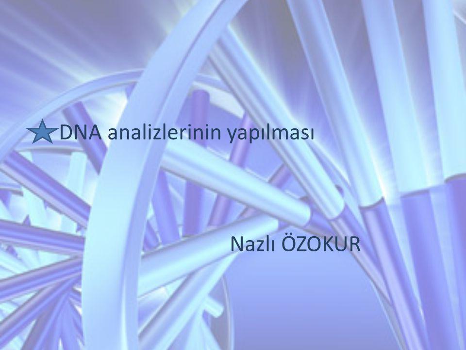 DNA analizlerinin yapılması Nazlı ÖZOKUR