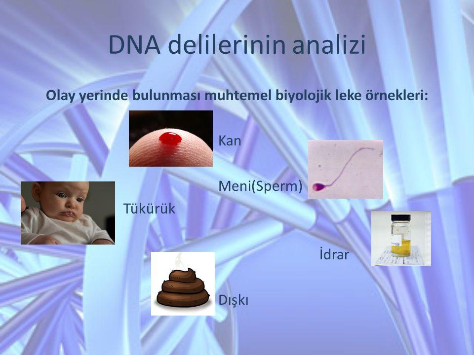 DNA delilerinin analizi Olay yerinde bulunması muhtemel biyolojik leke örnekleri: Kan Meni(Sperm) Tükürük İdrar Dışkı