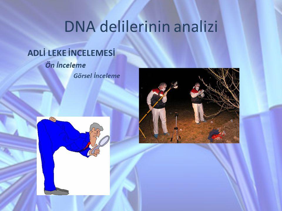 DNA delilerinin analizi ADLİ LEKE İNCELEMESİ Ön İnceleme Görsel İnceleme