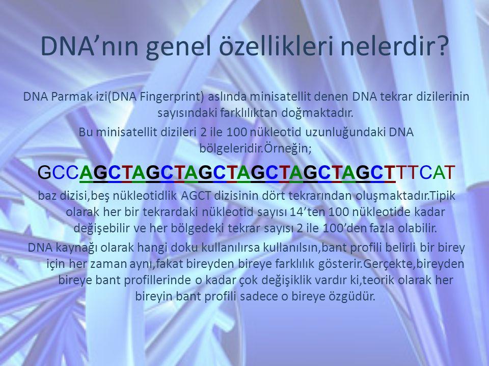 DNA'nın genel özellikleri nelerdir? DNA Parmak izi(DNA Fingerprint) aslında minisatellit denen DNA tekrar dizilerinin sayısındaki farklılıktan doğmakt
