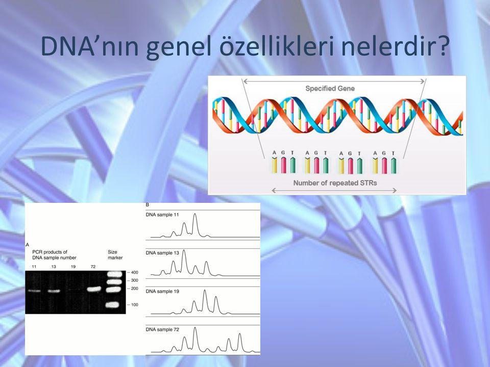 DNA'nın genel özellikleri nelerdir?
