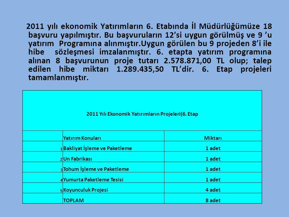 2011 yılı ekonomik Yatırımların 6. Etabında İl Müdürlüğümüze 18 başvuru yapılmıştır. Bu başvuruların 12'si uygun görülmüş ve 9 'u yatırım Programına a