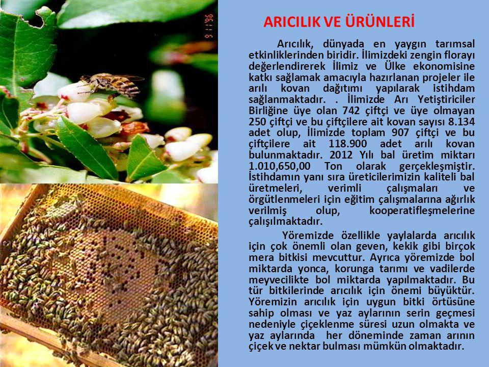 ARICILIK VE ÜRÜNLERİ Arıcılık, dünyada en yaygın tarımsal etkinliklerinden biridir. İlimizdeki zengin florayı değerlendirerek İlimiz ve Ülke ekonomisi