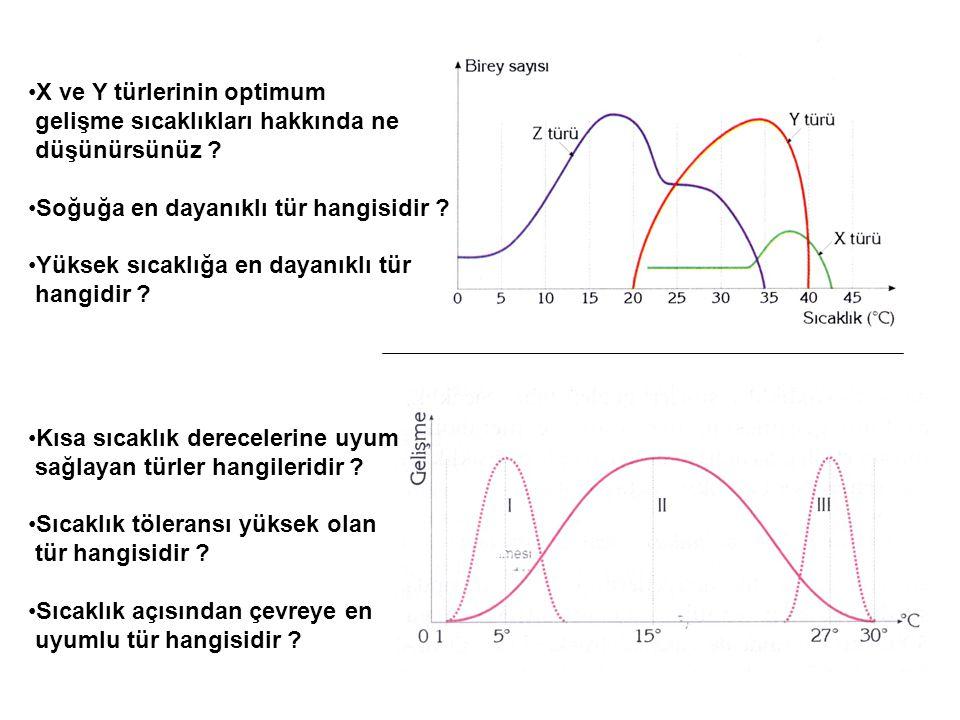 •X ve Y türlerinin optimum gelişme sıcaklıkları hakkında ne düşünürsünüz ? •Soğuğa en dayanıklı tür hangisidir ? •Yüksek sıcaklığa en dayanıklı tür ha