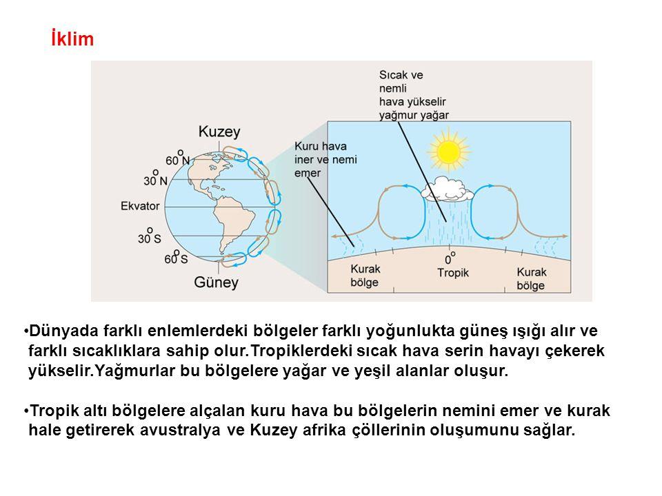 İklim •Dünyada farklı enlemlerdeki bölgeler farklı yoğunlukta güneş ışığı alır ve farklı sıcaklıklara sahip olur.Tropiklerdeki sıcak hava serin havayı