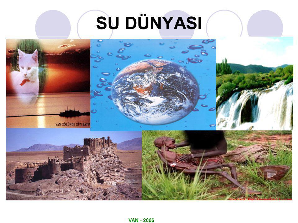 VAN - 2006 SU DÜNYASI