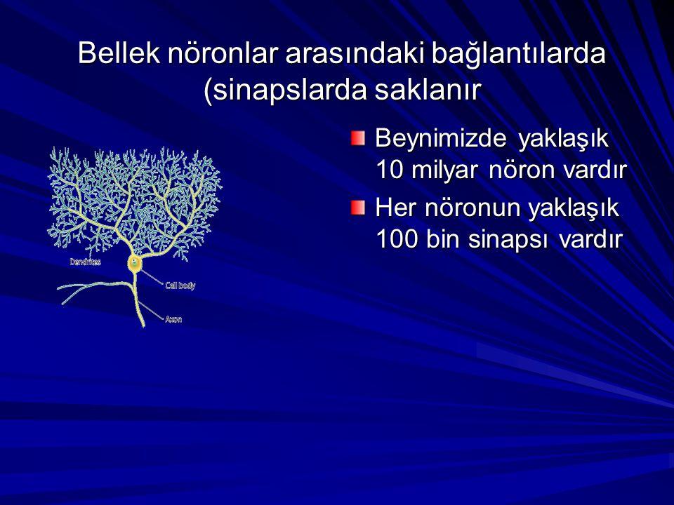 Bellek nöronlar arasındaki bağlantılarda (sinapslarda saklanır Beynimizde yaklaşık 10 milyar nöron vardır Her nöronun yaklaşık 100 bin sinapsı vardır