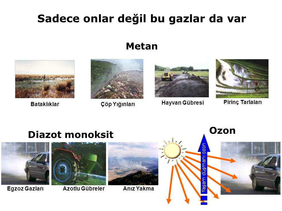 Yaşam düşmanı ozon Ozon Diazot monoksit Egzoz Gazları Azotlu Gübreler Anız Yakma Metan Çöp Yığınları Hayvan Gübresi Pirinç Tarlaları Bataklıklar Sadec