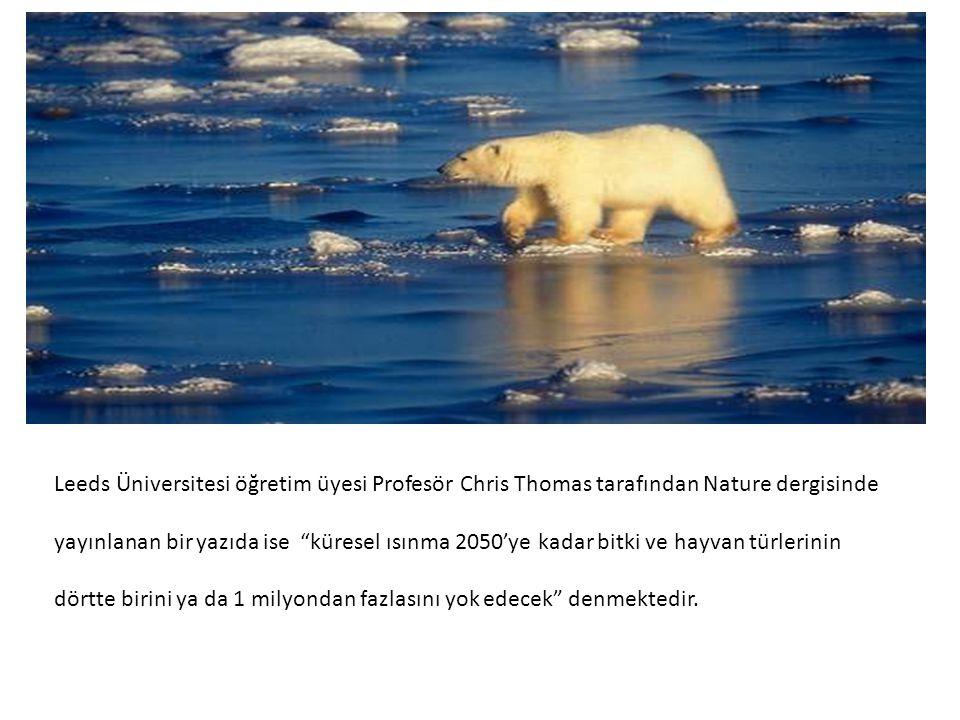"""Leeds Üniversitesi öğretim üyesi Profesör Chris Thomas tarafından Nature dergisinde yayınlanan bir yazıda ise """"küresel ısınma 2050'ye kadar bitki ve h"""