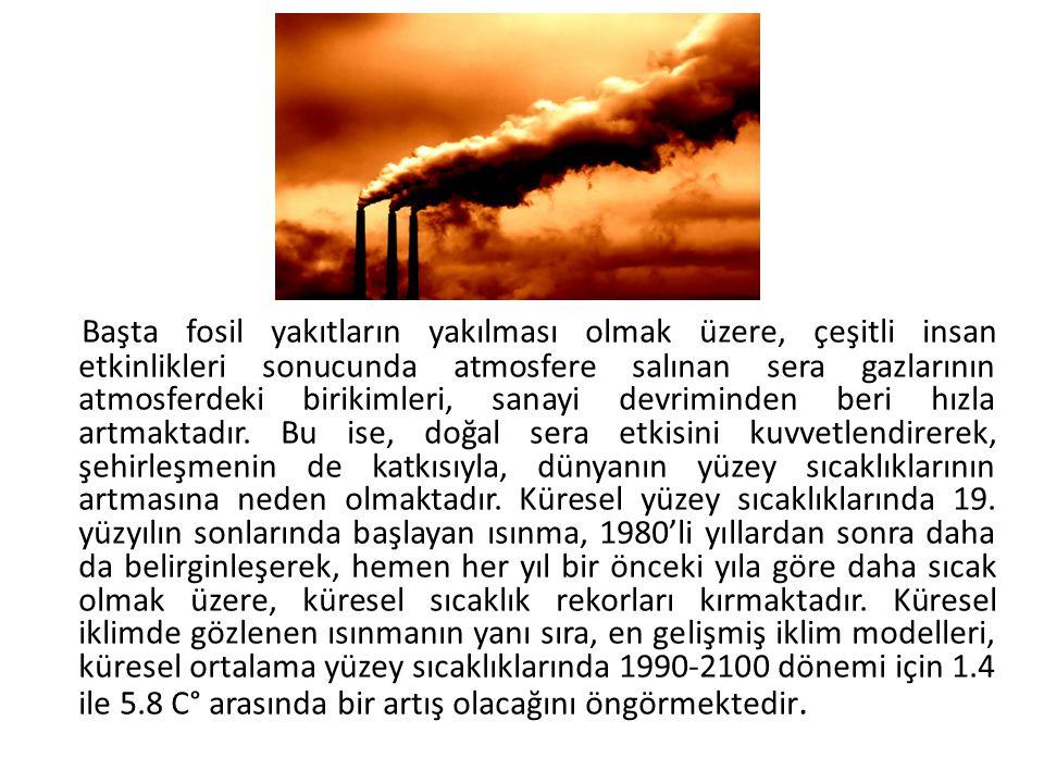 Başta fosil yakıtların yakılması olmak üzere, çeşitli insan etkinlikleri sonucunda atmosfere salınan sera gazlarının atmosferdeki birikimleri, sanayi