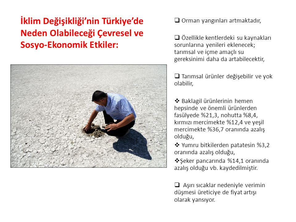 İklim Değişikliği'nin Türkiye'de Neden Olabileceği Çevresel ve Sosyo-Ekonomik Etkiler:  Orman yangınları artmaktadır,  Özellikle kentlerdeki su kayn