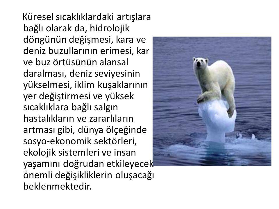 Küresel sıcaklıklardaki artışlara bağlı olarak da, hidrolojik döngünün değişmesi, kara ve deniz buzullarının erimesi, kar ve buz örtüsünün alansal dar